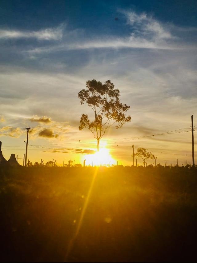 Vista Campo